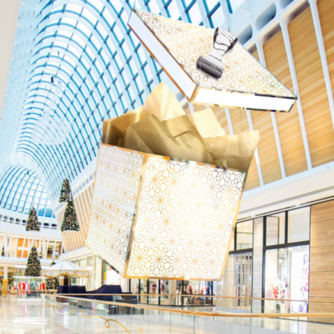 Chas Clarkson – QIC Shopping Centres